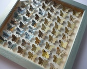 Collage Butterfly Collection - Signed Butterfly Box Frame - Faux Taxidermy - UK Seller - OOAK - Diary Papers - Handmade