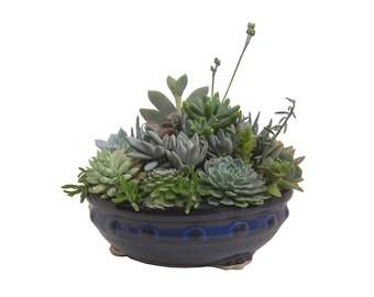 """Succulent Arrangement Centerpiece 8"""" Round Ceramic  Planter Container Dish Garden Gift Modern Minimalist"""