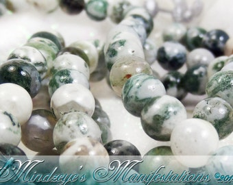 1 Strand Smooth Tree Agate Rounds 6mm