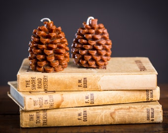 Festive Pinecone Beeswax Candle