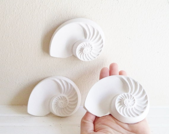 Nautilus shell wall sculptures, nautical decor, sea shells, beach house decor accent