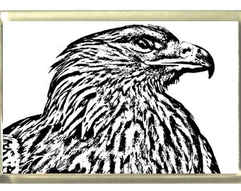 Eagle Fridge Magnet 7cm by 4.5cm,