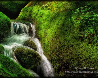 Smoky Mountain Stream and Mossy Boulders E223