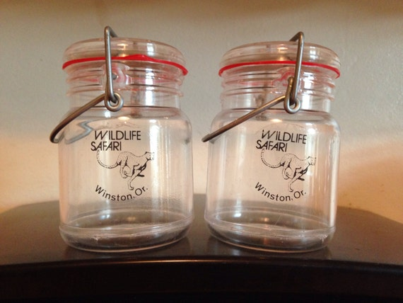 Mason Jar Salt And Pepper Shakers Souvenir By Emericksemporium