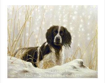 Working Springer Spaniel. Limited Edition Print. Personally signed and numbered by JOHN SILVER. jsfa028