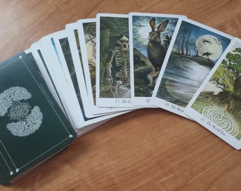 Wildwood Tarot Reading