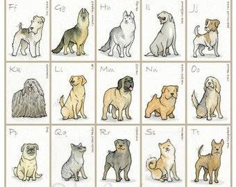 "Dog Breed Alphabet, 12"" x 16"", Original Print, Watercolor Illustration"