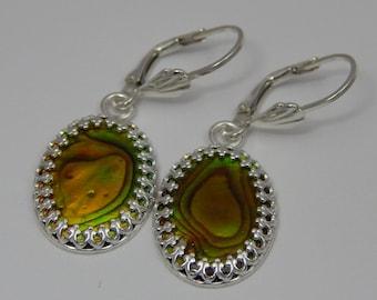 Gold/Green Paua Shell Earrings. Abalone Earrings. Paua Shell Dangle Earrings. Paua Shell Earrings