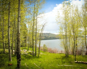 Lake Scene Photo/Vallecito Lake/Colorado Photography