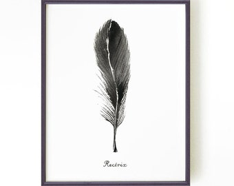 Feather print Black and white print Watercolor print Ink painting Feather illustration Black feather art RECTRIX Buy 2 Get 1 FREE