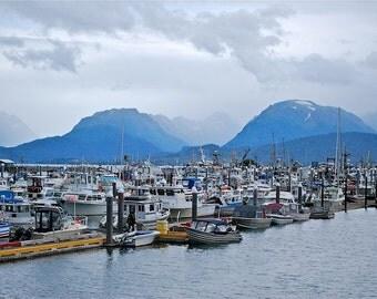 Alaska, homer, port, harbor, boats, colorful, grand, mountains, cloudy