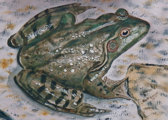 How To Paint A Frog On Rock Home Design amp Architecture