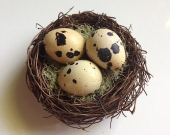 Handcrafted bird nest with real Quail Eggs