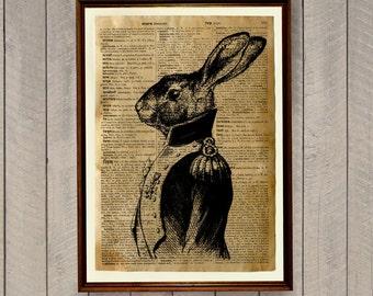 Animal poster Rabbit illustration Antique Dictionary art Wildlife print WA7