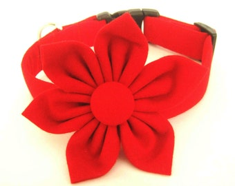Dog collar Dog collar with red fabric flower Flower dog collar Red dog collar Dog gift