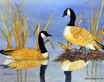 Geese on Beaver Meadow Pond is an archival matted print from an original watercolor.