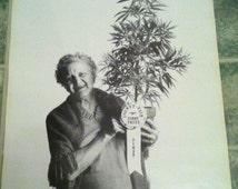 Fun Vintage 1973 poster of Granny Winning 1rst Prize Marijuana Plant