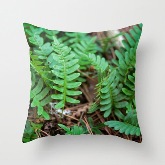 Fern Pillow Cover, Boundary Waters, Nature Photography, Brown and Green, Natural Colors, BWCA Photo, Image Pillow, Home Decor, Minnesota