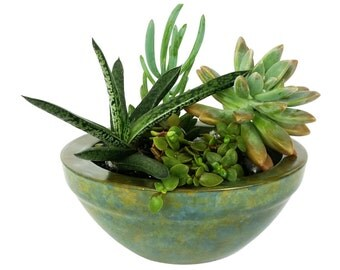 Rustic Teal Concrete planter with or without plants
