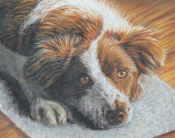 Custom Pet Portrait, Oil Pastel Painting,  Dog Portrait by  Pet Portrait Artist, Custom Dog Art