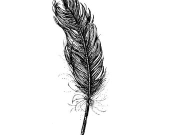 Feather, digital print of an original drawing, A4 or A5