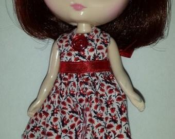 Delightful Dress for Middie Blythe