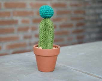crochet cactus in terracotta flower pot