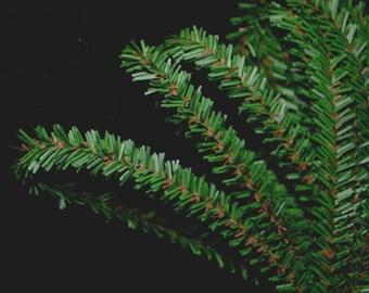 "Canadian Pine Rope Garland - 25 feet of Thin Pine Garland 3/8"" thick - Christmas"