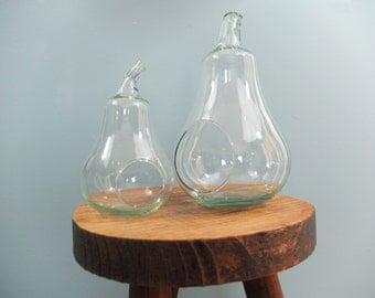 Glass PEAR / Terrariums / Vintage