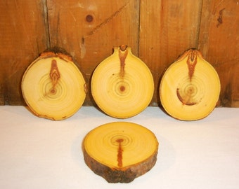 Knotty Poplar wood rounds, slices, coasters, rustic.