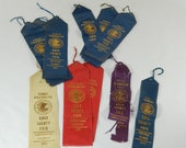 Lot of 11 Antique County Fair Ribbons, 1930-1932, Knoxville, IL, First-Third Places