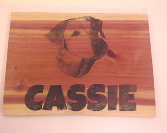 Unique Custom doghouse pet sign with custom photo and name ~ Send me a photo and name
