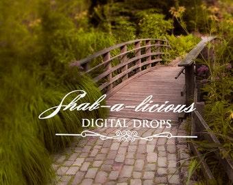 Digital Backdrop/Background Serene/bridge/trees/stone/path/serenity/spring