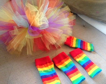 Dog rainbow tutu and leg warmers