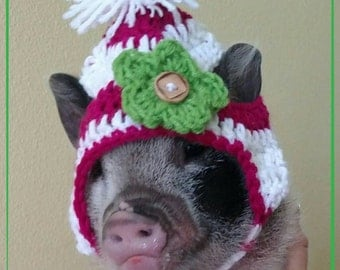 Crochet hat for mini pigs, small pet clothing, chihuahua hats, small dog hats, hats for pigs, pet clothes, small animal clothing, photo prop