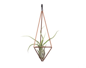 Hanging geometric copper himmeli air plant holder by for Geometric air plant holder