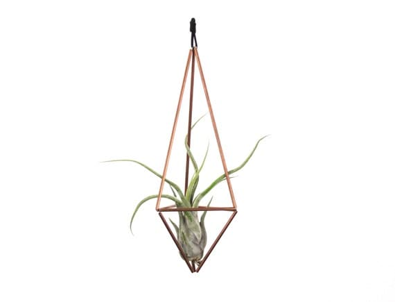 Hanging geometric copper himmeli air plant holder for Geometric air plant holder