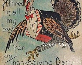 Thanksgiving Turkey all dressed up*Clever*Cards,invitations,tags,greeting cards,place cards