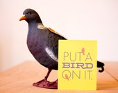 Put a Bird on It - Single Card