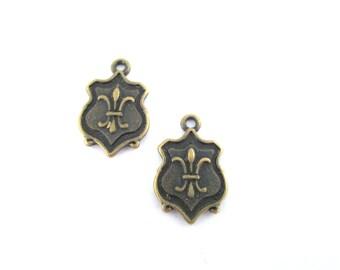 10 brass fleur de lys crest or plaque charms pendants, G439