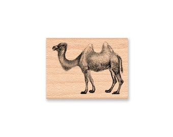 CAMEL-rubber stamp-wood mounted( 30-26)