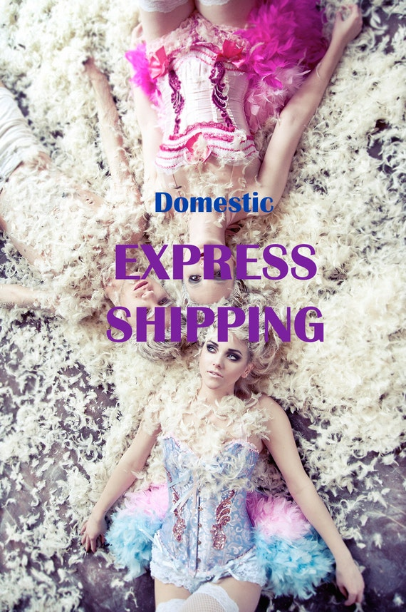 Add Express Shipping to your Domestic order