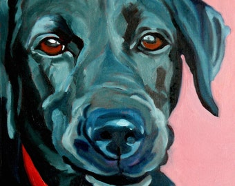 Polly the Black Labrador Dog Portrait
