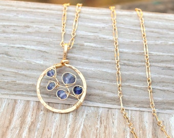 As Seen On Law & Order: SVU - Bluebonnet Necklace, Gold Pendant Necklace, Blue Iolite Gemstone Pendant, Minimalist Gold Necklace