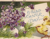 A Glad Easter Day- 1900s Antique Postcard- Edwardian Easter Decor- Spring Flowers- Hatchling Chicks- Embossed Violets Art- Paper Ephemera