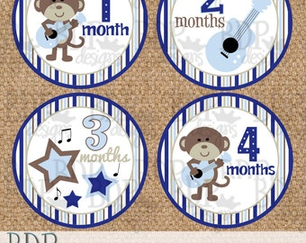 "Rock Star Monkey Monthly Onesize Stickers - 4"" diameter"