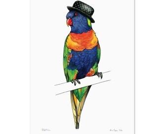 Rainbow Lorikeet in a Bowler: A4 Print