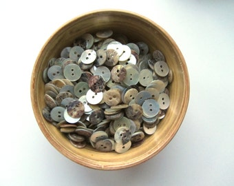 Shell buttons 11 mm button nr. 69 | 50 pieces
