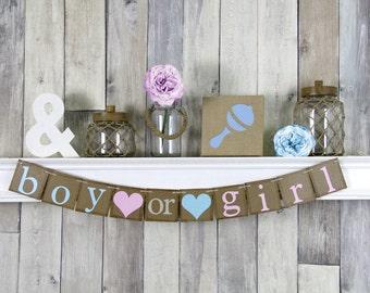 Boy or Girl Banner, Gender Reveal Banner, Boy or girl Gender Reveal,