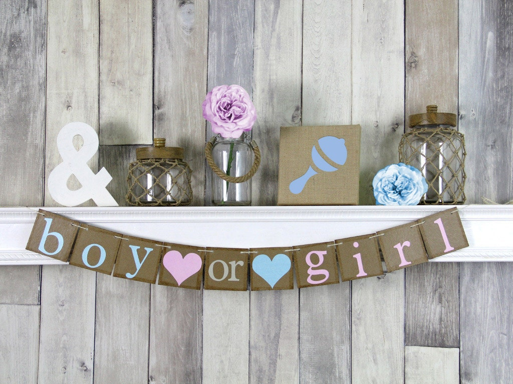 Boy or Girl Banner Gender Reveal Banner Boy or girl Gender